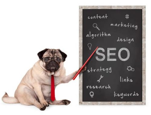 How to Use B2B SEO for Quality Lead Generation Purposes